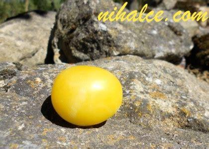 sarı erik faydaları