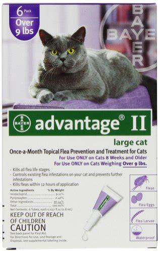 advantage ii large bayer advantage ii large cat 9 pound 6 month pet animals