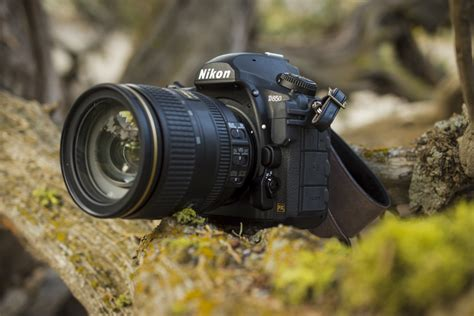 nikon d850 propels company to top frame sales for
