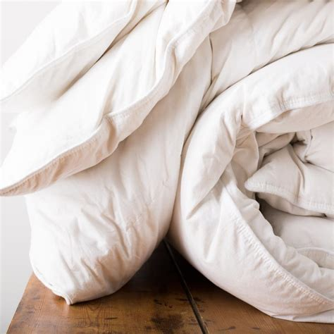 Savoy Pillow by Savoy Feather And Duvet Tielle Luxury