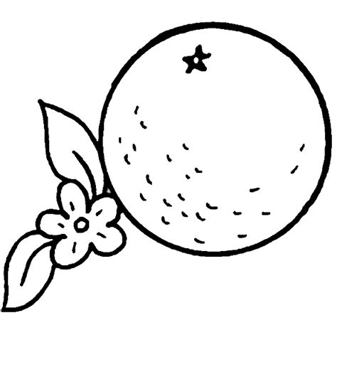 Free Oranges Coloring Pages Learn To Coloring Orange Coloring Pages