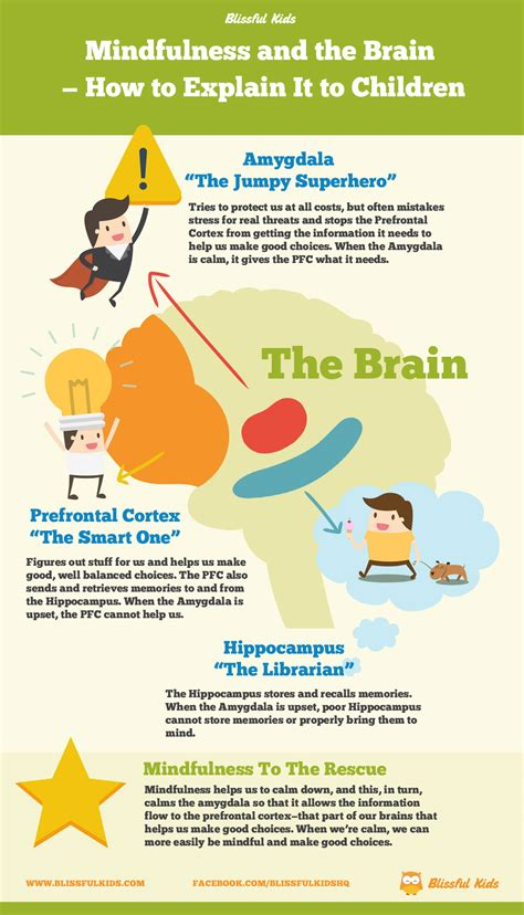 mindfulness and the brain how to explain it to children blissful