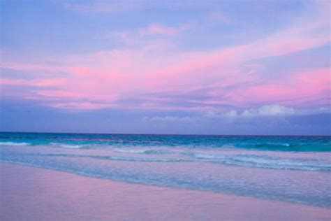 beaches with pink sand pink sand the official site of the bahamas