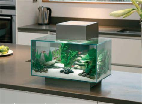 aquarium design edge desktop aquariums bespoke designer aquariums custom