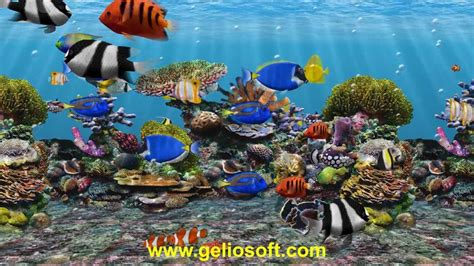 themes for windows 7 aquarium moving fish wallpapers for desktop amazing wallpapers