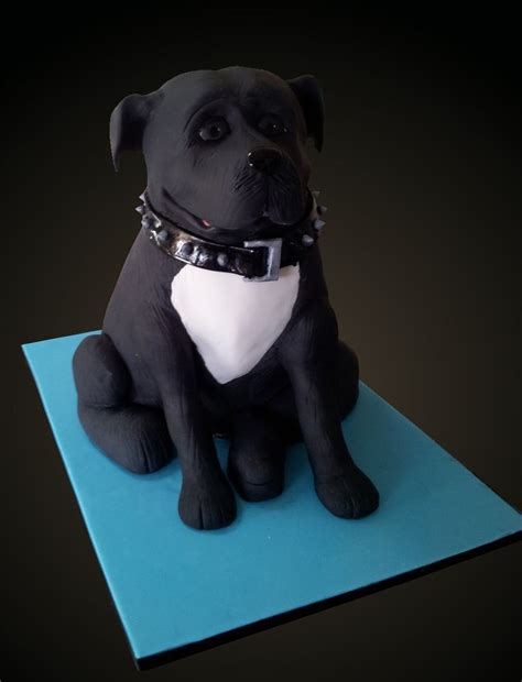 staffy cake   collar  edible find   wwwfacebookcomfunkycakedesigns funky