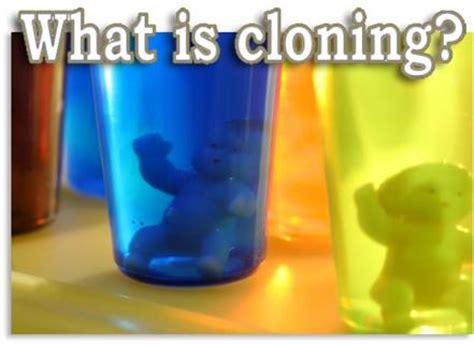 human cloning campaign life coalition