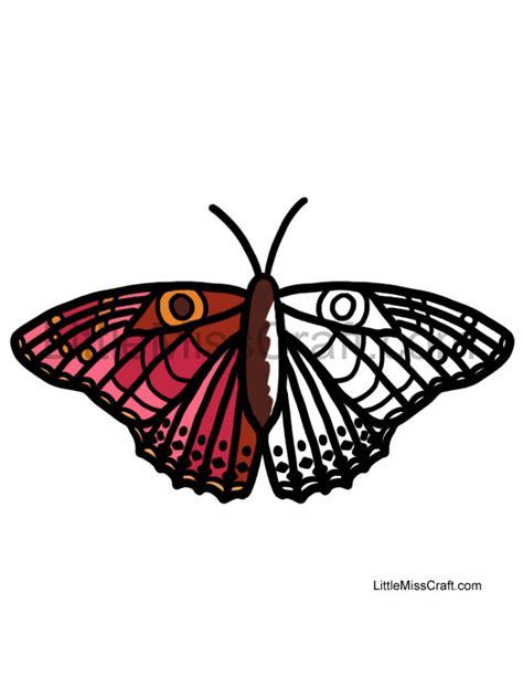 coloring page of painted lady butterfly crafts butterfly painted lady coloring page