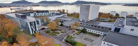 Nhh School Of Economics Mba by International Benchmarking With The Best Universities