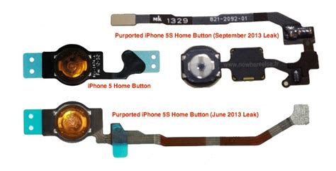 leaked iphone 5s home button flex cable hints at