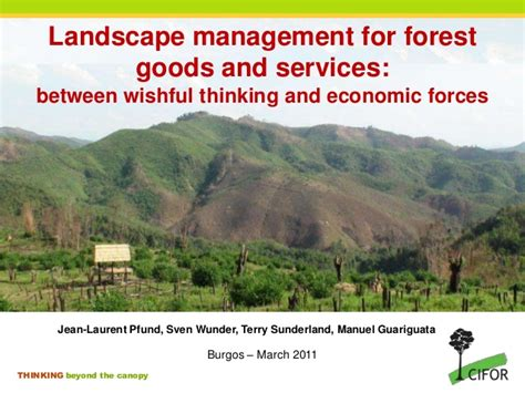 landscape management for forest goods and services