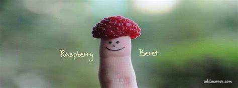 raspberry beret facebook covers raspberry beret fb covers
