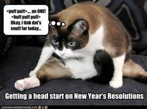 funny new years resolutions 24 pics