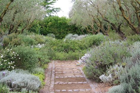 landriana giardini i giardini della landriana sfumature verdi