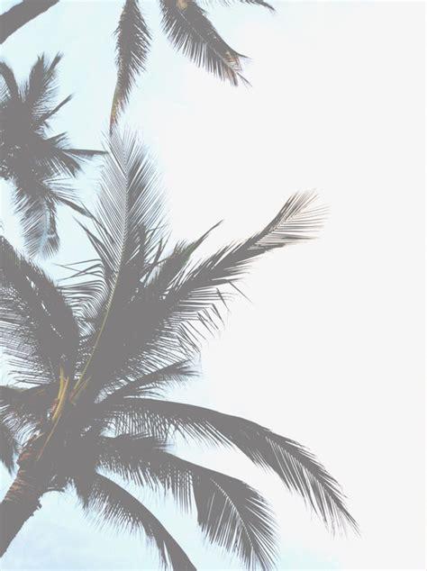 Wallpaper Tumblr Overlays | vintage overlays tumblr