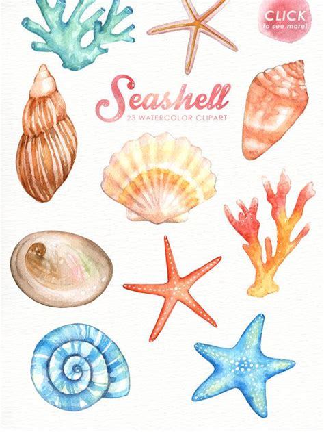 sea shell clip seashells watercolor clipart nautical watercolor clip
