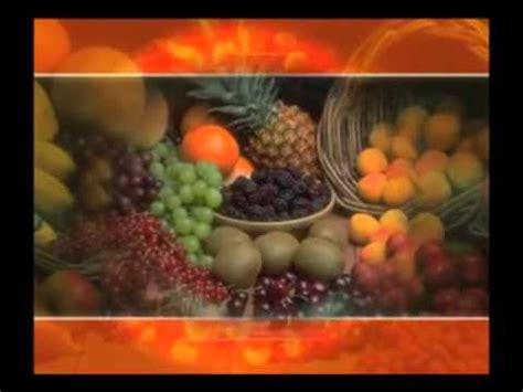descomposicion  conservacion de alimentos youtube