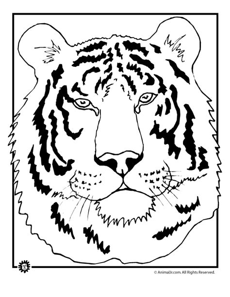 tiger head coloring page woo jr kids activities