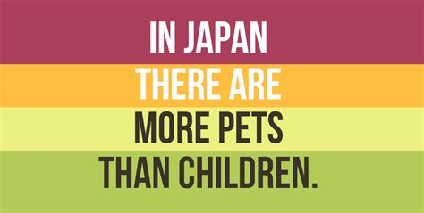 japan facts for kids 10 facts about japan that you can never believe to be