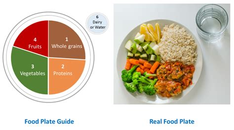 Meal Plate what is healthy diet or balanced diet what u eat