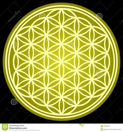 flower of life sacred geometry stock photos image 10306653