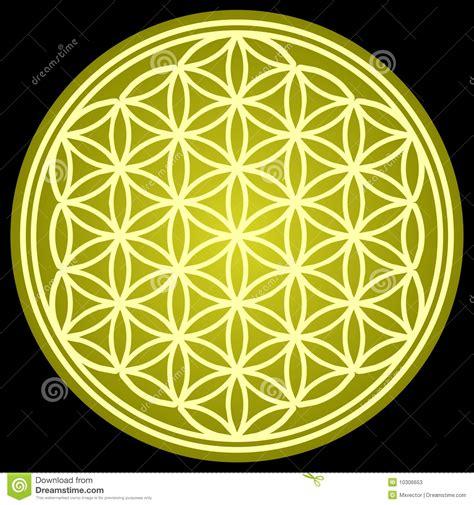 flower of life sacred geometry stock photos image 10306653