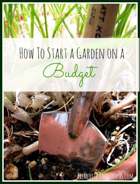 Frugal Gardening by Frugal Gardening Tips How To Start A Garden On A Budget