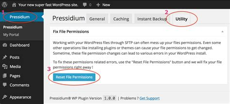 reset permissions tool pressidium review findbestwebhosting com fbwh blog
