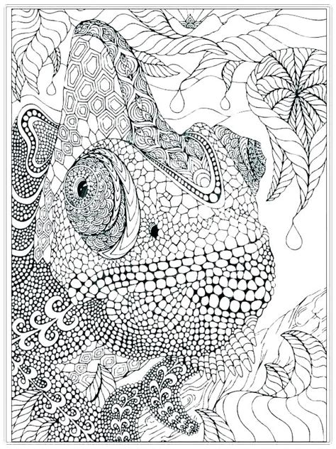 free printable advanced coloring pages coloring advanced coloring pages printable