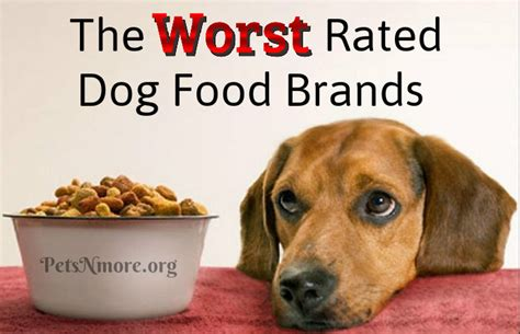 worst food brands pets n more the worst food brands