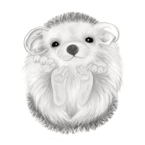 Home Decor Ideas Blogs by Baby Hedgehog Digital Art By Veronica Ventress