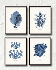 white cactus coral nautical home decor tropical los gold coral print set of six coral art prints white beach