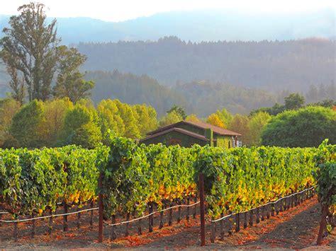 napa valley californias beautiful wine country