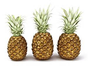 pineapples pictures to pin on pinterest pinsdaddy
