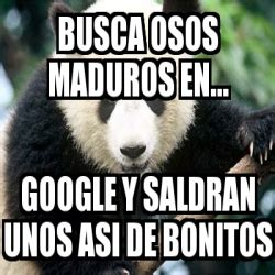 osos maduros related keywords suggestions osos maduros long tail osos maduros related keywords osos maduros long tail