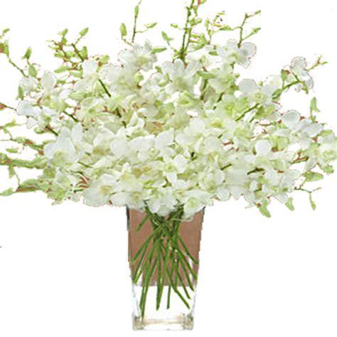decorative vase vases flower vase flowers orchid white vases design ideas decorative vases and faux flowers