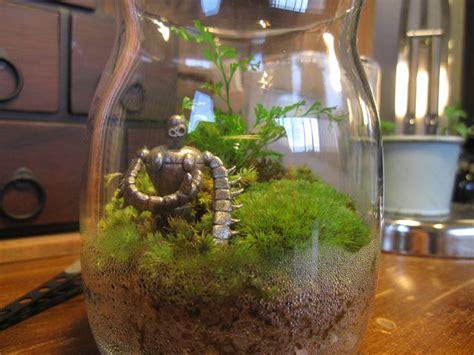 aqua terrarium designs terrarium and robots on