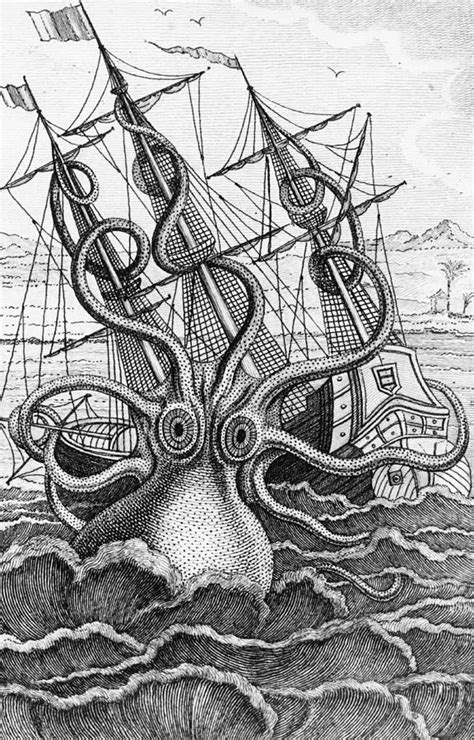 boat and octopus drawing octopus shipwreck drawing