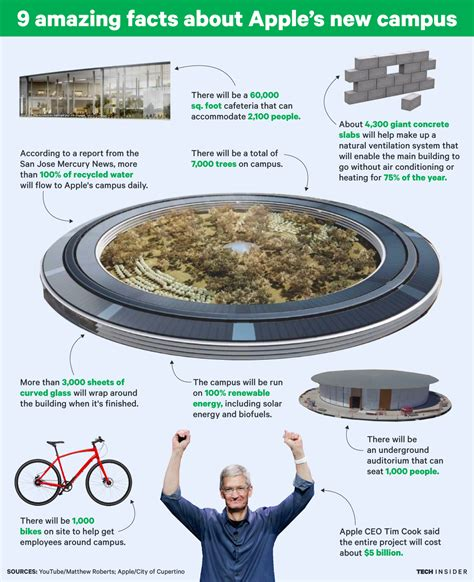 Apple Neubau facts about apple s new spaceship cus business insider