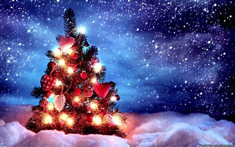 christmas xmas wallpapers christmas tree images christmas tree with lights 2560x1600 wallpaper