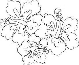 free coloring pages of hawaiian flowers hawaiian flowers coloring page coloring home