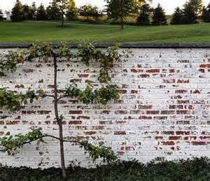 Mortar washed brick love home decor pinterest
