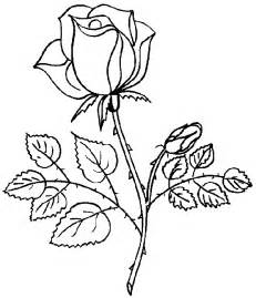 roses coloring pages coloring pages of roses coloring pages to print