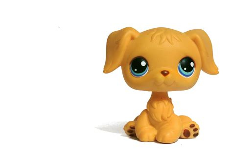 lps background lps transparent