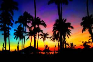 colorful palm trees rainbow sky by jeffeng2091 apps directories