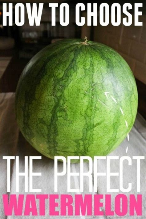 watermelon before bed 25 best ideas about how to choose watermelon on pinterest