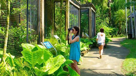 Tiket Bali Bird Park Dewasa bali bird park lokasi dan harga tiket masuk taman burung
