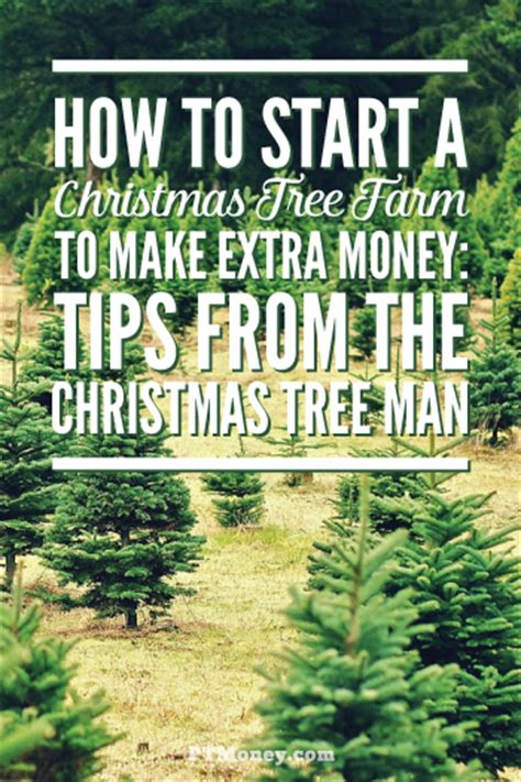 10 tips to start a christmas tree farm to make money pt