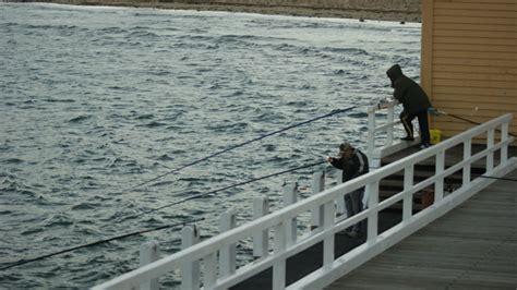 fishing boat queenscliff queenscliff fishing intown geelong