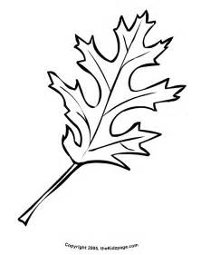 fall leaves coloring pages autumn leaves coloring pictures images